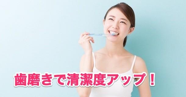 ③歯磨き回数が多く清潔感アップ