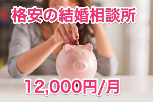 料金は格安の12,000円